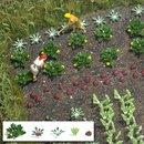 Busch 1222 Gemüse & Salat H0